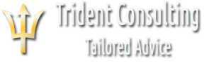 Trident Consulting logo